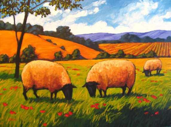 Two Grazing Sheep